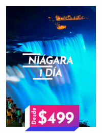 Excursión Cataratas del Niagara