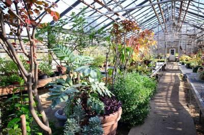 Jardín Bótanico de Queens