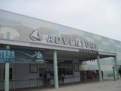 Acuario Adventure