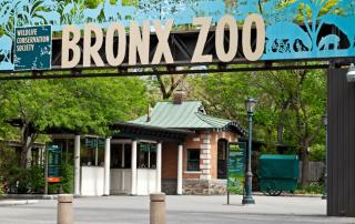 Nueva York en un día - Bronx