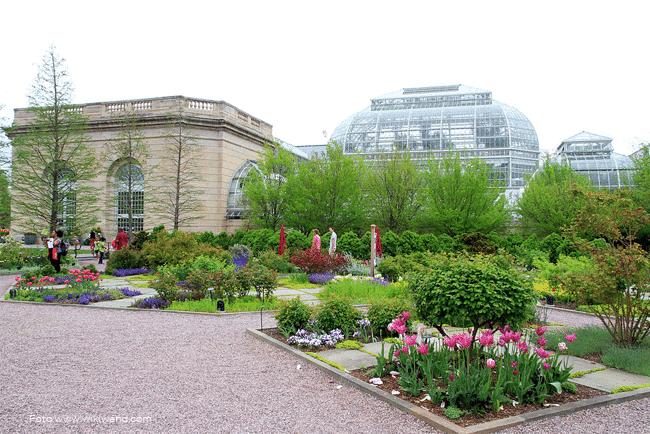 Jardin-botanico-de-los-Estados-Unidos