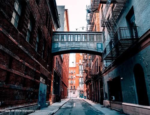 NUEVA YORK EN 1 DÍA: TRIBECA