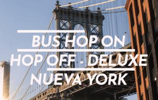 Bus Hop On Hop Off Deluxe