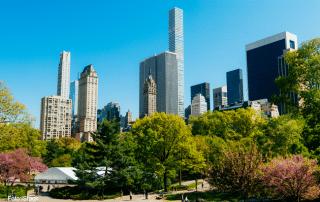 Tours por Nueva York