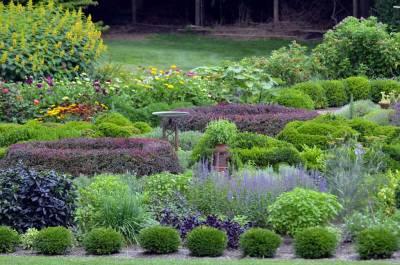 The Arnold Arboretum of Harvard University