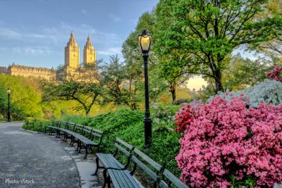 Que debes saber antes de visitar Nueva York