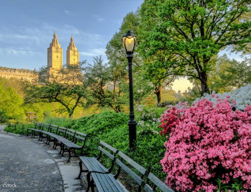 ¿QUÉ DEBES SABER ANTES DE VISITAR NUEVA YORK?