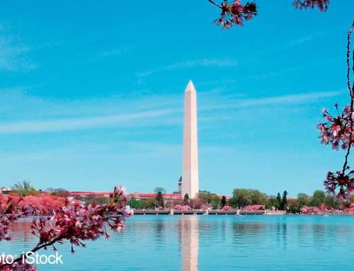 EXCURSIÓN A WASHINGTON DC DESDE NUEVA YORK EN ESPAÑOL