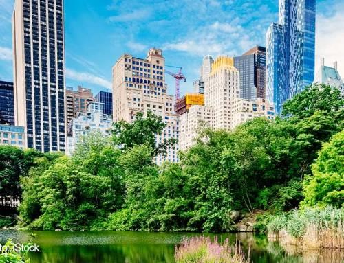 TOUR POR EL ALTO Y BAJO MANHATTAN DE NUEVA YORK